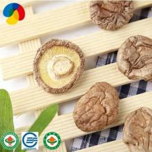 Vegetarian Dried Shiitake Mushroom