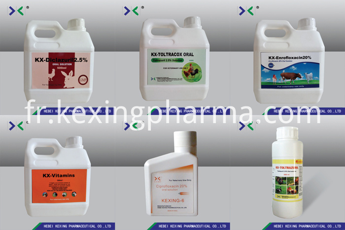 Enrofloxacin Oral Solution 10%