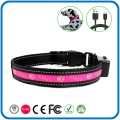 Led Shinning Light Illuminated Pet Dog Collar