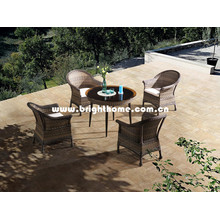 Hot Sale Wicker Outdoor Dining Furniture Bp-3017