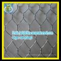 Galvanized Hexagonal netting / chicken mesh