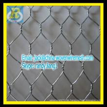 Galvanisiertes Sechskantnetz / Hühnchengewebe