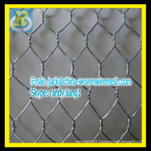 Galvanized Hexagonal netting / chicken mesh