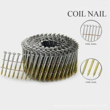 Professional Galvanized Common Nails with Nice Price