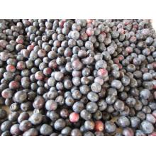 IQF Морозильная / сублимированная органическая черника Zl-001 8