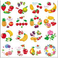 Round Shape Cartoon fruit Flower Design Iml, in Mold Label