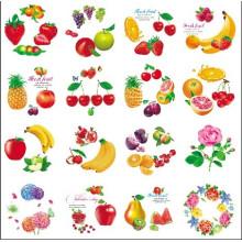 Projeto da flor do fruto dos desenhos animados da forma redonda Iml, na etiqueta do molde
