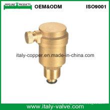 ODM Type Brass Air Vent Valve (IC-3041)