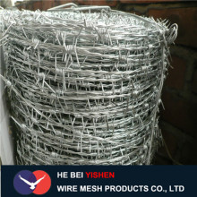 Low price hot-dip galvanized barbed wire