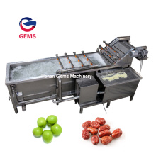 Date Washing Machine for Food Washing Machine Belt