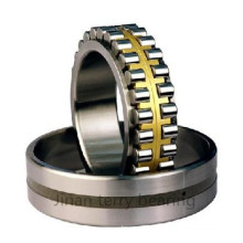 Les roulements à rouleaux cylindriques à faible bruit de haute qualité (NN3012)