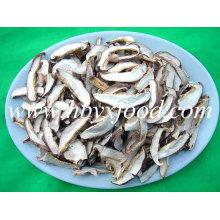 Tranche de champignons Shiitake séchée de haute qualité cultivée, champignon ISO
