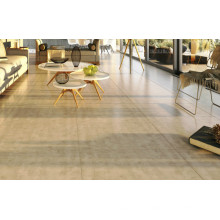 Hot Selling Porcelain Floor in Stock (AJSL611)
