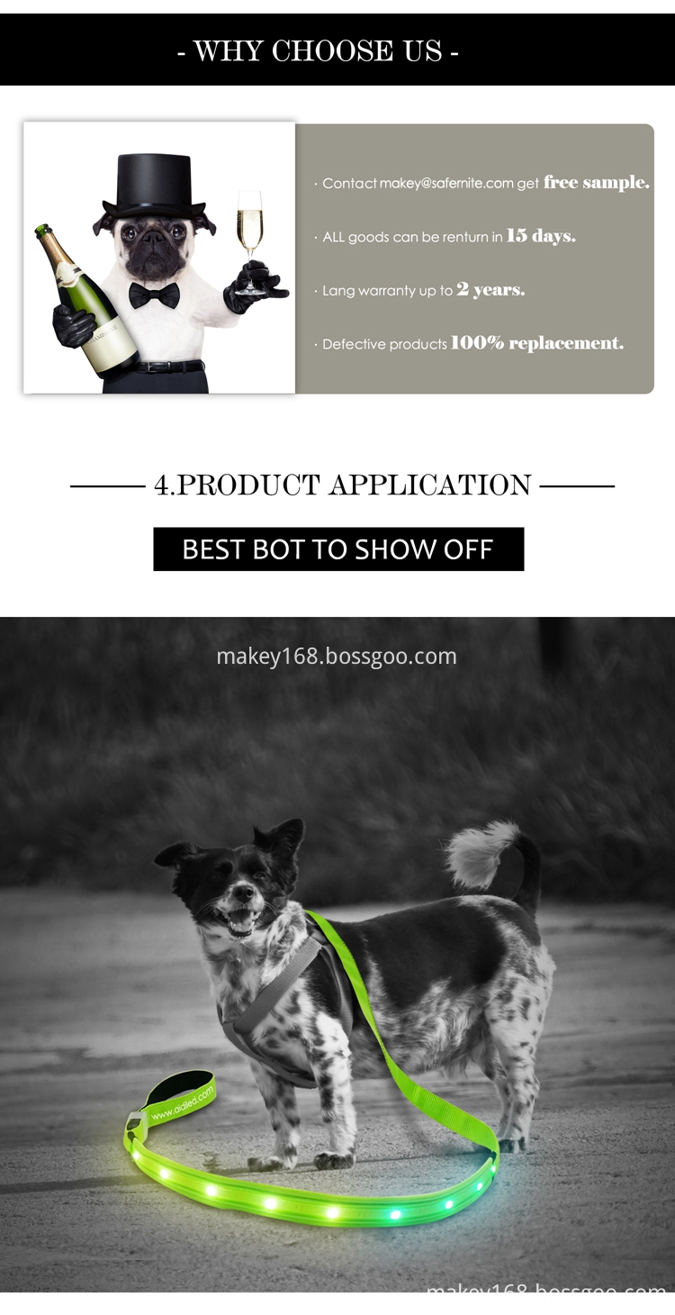 Rechargeable RGB LED Dog Leash