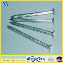 Galvanized Common Nails Price (XA-CN007)