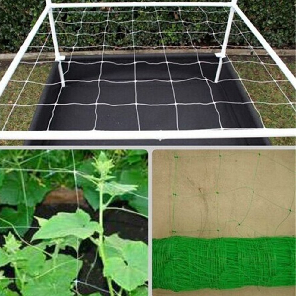Uasge Of Plant Support Net