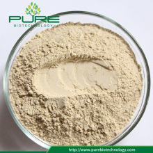 Wholesale Angelica sinensis Powder /dong quai powder