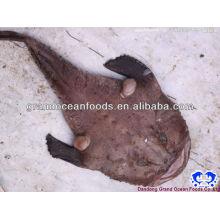 frozen monkfish tail skinless