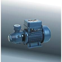 Peripheral Pump, Electric Pump with CE and UL (DKF1)