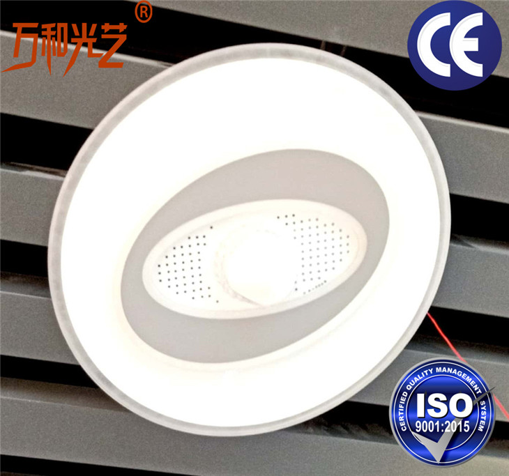master bedroom ceiling lamp(9)