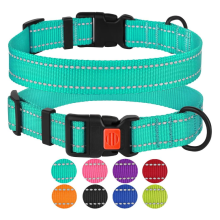 Reflective Dog Collar with Buckle