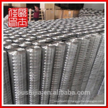 Galvanized Welded Mesh(high quality low price factory)