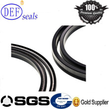 Outside Spring Energized Seals PTFE Spring Lip Seaqls