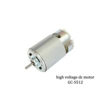 High Voltage Brush Motor 36v DC Motor