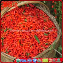 Venda quente china orgânica seca bagas de goji