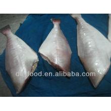 Congelado Pele de peixe (jaqueta de couro)