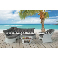 Muebles al aire libre / sofá de los muebles de Wiker (BP-832)