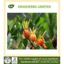 Extrait Gardenia Geniposide 10% ~ 98% HPLC