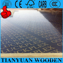 Film Faced Construction Plywood/18mm WBP Glue Waterproof Plywood