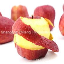 China Shandong Huaniu Apfel