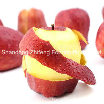 China Shandong Huaniu Apple