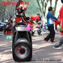 Haut-parleur actif en plastique portatif de Hot Sale Karaoke avec Bluetooth, FM