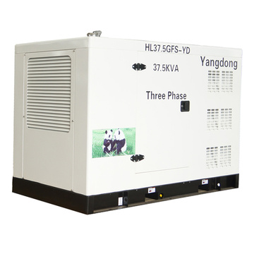 SHANHUA 30 kW cheap noiseless generator for sale