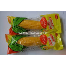 2019 new crop sweet corn