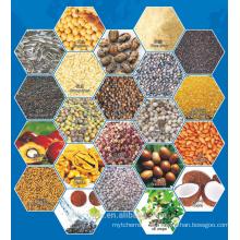 China Hutai BH série secador de roupa plana / óleo secador de sementes / planta de óleo secador de placa Plana 0086 15838395576
