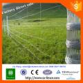 Acier galvanisé clôture de terrain clôture de fil de vache clôture de fil de mouton T publications