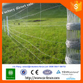Galvanized Steel field fence cow wire fence sheep wire fence T posts