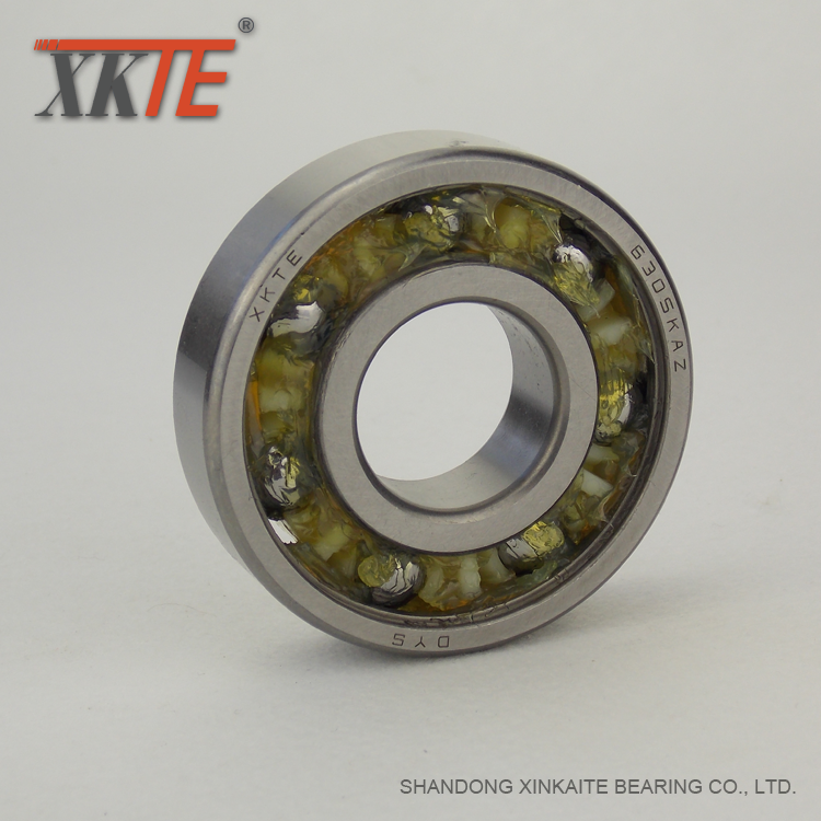 6305kaz Sealed Polyamide Cage Bearing
