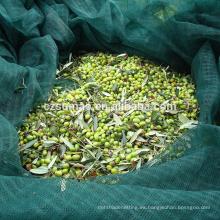 Antigua red colectora de olivos 100g m2 económicos
