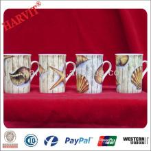 China Taza de la taza de Drinkware / taza blanca de la porcelana tazas Taza de la taza 9OZ / fina blanca con la impresión de la etiqueta de la estrella de mar de los Seashells