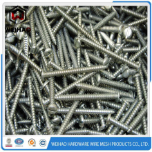 China Self Tapping Screws Special Screws Chipboard Screws