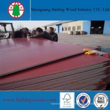 Color rojo Film Faced Plywood para la construcción