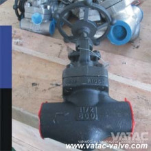 A105 Кованая сталь Cl800 NPT & Sw & Bw Globe Valve