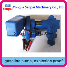 Dyb50/75-DC12b Gasoline Pump, Explosion Proof