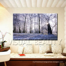 Decorative Pictures for Bathrooms