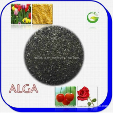 Seaweed Extract Organic Fertilizer (ALGA WS100)
